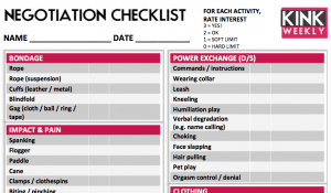 BDSM negotiation checklist preview